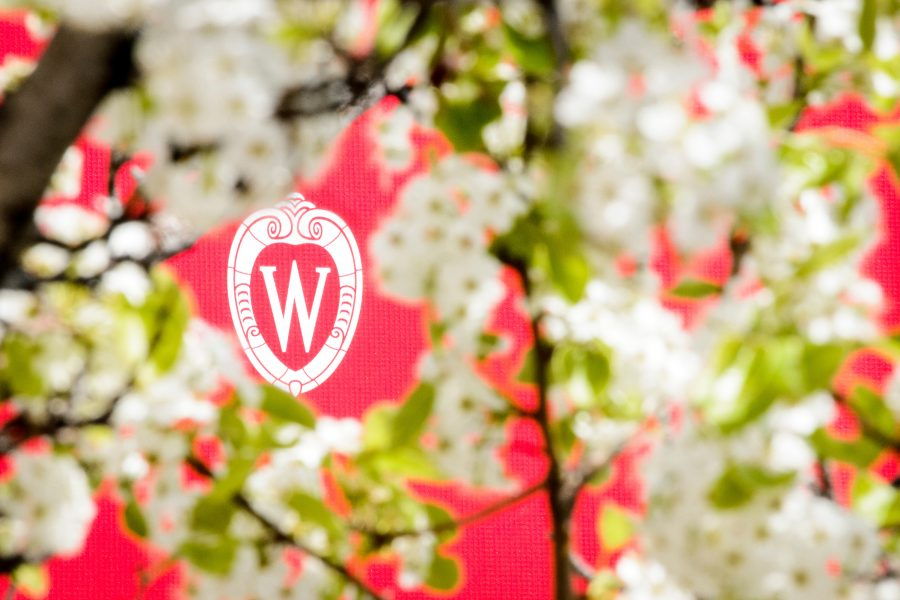A W crest surrounded by the spring blooms of an ornamental pear tree